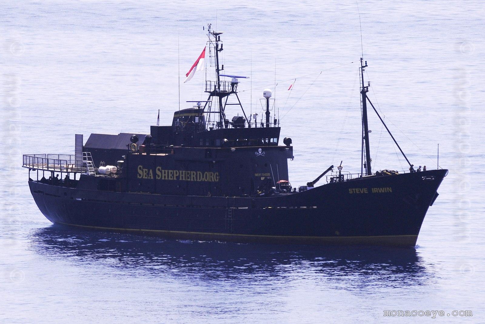 Steve Irwin. 53 metre anti-whaling ship in the Sea Shepherd fleet